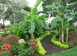 tropical garden schedel gardens