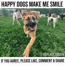 Happy Dog Meme - happy dogs make me smile haplacetobark if you agree please like