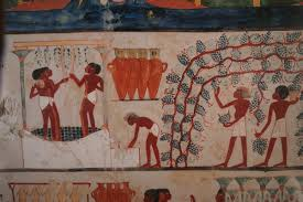 packing food for the hereafter in ancient egypt national an official named nakht wanted to make sure he d have something nice to drink