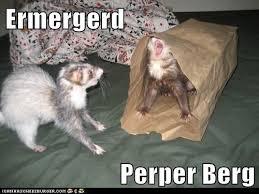 Er Mer Gerd Meme - ermergerd perper berg cheezburger beta on imgfave