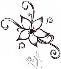 Simple Lotus Flower Drawing - best 25 flower drawings ideas on pinterest pretty flower