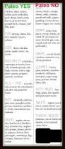 best 25 paleo for beginners ideas on pinterest paleo diet plan