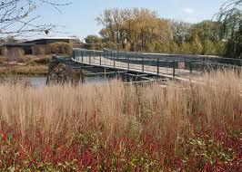 trellis bridge il ovs landscape architecture