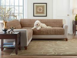 Sofa Protector Sofa Pet Sofa Covers Lovely Pet Protection Couch Covers Sofa And