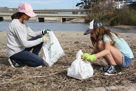 thanksgiving help giving time volunteers help clean the beach during annual