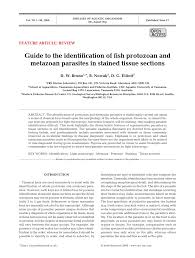guide to the identification of fish protozoan and metazoan