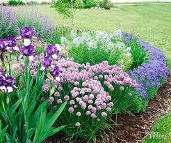 1264 best plant and garden colours purple images on pinterest
