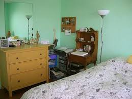 mint green paint for bedroom nrtradiant com