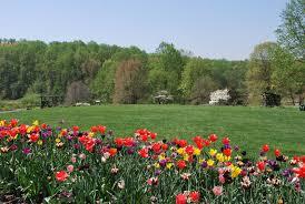 meadowlark botanical gardens in vienna va nova outdoors