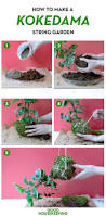 how to make a kokedama hanging garden