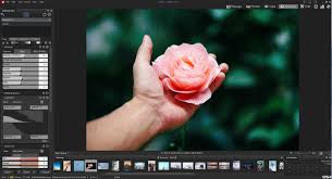 Ashampoo Home Designer Pro Opinie Acdsee Photo Studio Professional 2018 Sklep Vebo Pl