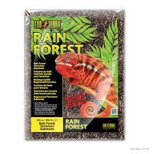 Heat Loving Plants by Exo Terra Rain Forest