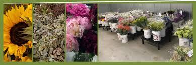 Bulk Flowers Market Flowers