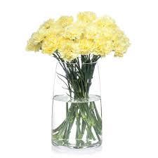Fresh Cut Flowers Buy Carnations Online Bill U0027s Fresh Flowers