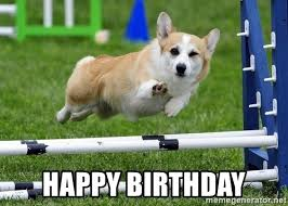 Corgi Birthday Meme - happy birthday ridiculously photogenic corgi meme generator