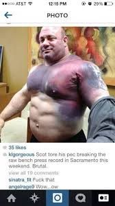 scott mendelson tears his pec trying to break a world record bench