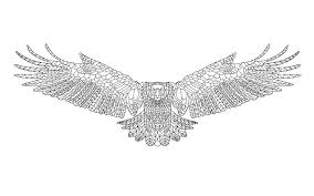 zentangle stylized eagle sketch for coloring page stock vector