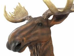 amazon com north american moose head bust wall hanging home