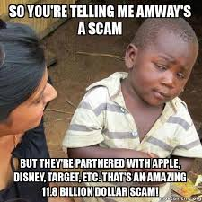 Scam Meme - so you re telling me amway s a scam but they re partnered with