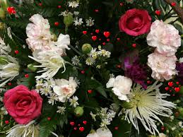 Beautiful Flowers Different Beautiful Flower Wallpapers Background Wallpapers