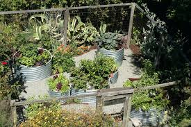 vegetable garden fence ideas image of vegetable garden fence ideas