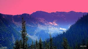 Washington mountains images Mountain sky trees cascade forest mountains washington color jpg
