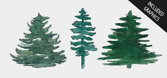 evergreen trees plaidgecko