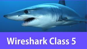 wireshark tutorial get wireshark certification wireshark certified network analyst class 2 videotoplay com