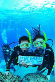 Dive Flag Australia 144 Best Keep Calm And Dive On Images On Pinterest Diving