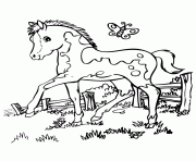 rearing horse s8dcc coloring pages printable