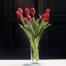 flowers uk tulip amaranthine blooms