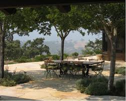 Backyard Shade Trees Shade Trees Mediterranean Houzz