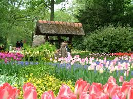 dalat flower gardens flower gardens in dalat vietnam