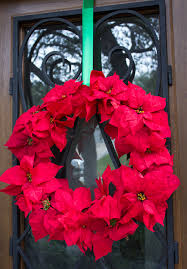 poinsettia wreath design improvised