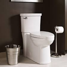 Home Depot Toliets Bathroom Enchanting Commodes At Lowes For Modern Bathroom Design
