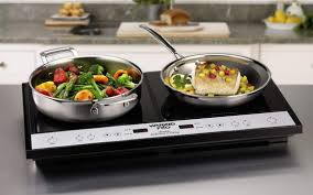 Electromagnetic Cooktop Best Portable Induction Cooktop Reviews 2016 Buyvaluablestuff Com