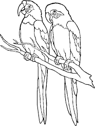 parrot coloring pages coloring pages kids