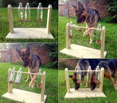 Make Your Own Dog Toy Box by Diy Spinning Plastic Bottle Dog Treat Game Home Design Garden