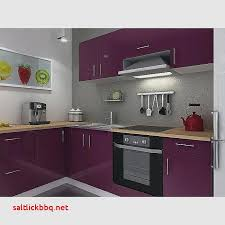 meuble de cuisine aubergine fraîche meuble cuisine aubergine mat pour idees de deco de cuisine