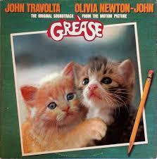Cat Photo Album Top 10 Parody Album Covers Featuring Cats Petful