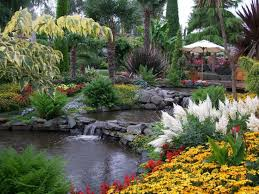 440 best pond and garden landscaping images on pinterest