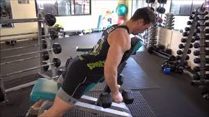 Incline Bench Dumbbell Rows How To Incline Bench Dumbbell Row Youtube