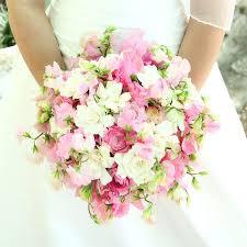 Popular Bridal Bouquet Flowers - 388 best wedding flowers bouquets images on pinterest flowers