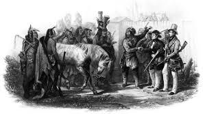 Pilgrims And Thanksgiving History Thanksgiving History Pilgrims Page 2 Divascuisine Com