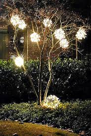 best way to put lights on outdoor trees rainforest
