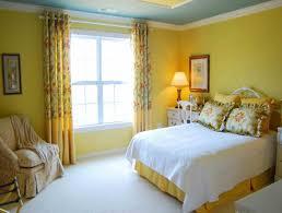 Green Color Bedroom - wall green color living room design idea amazing wall color for
