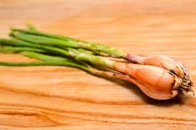 how to tell the difference between spring onions shallots and