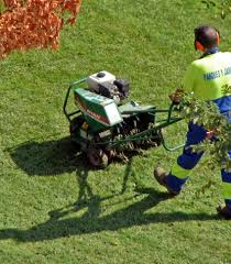 lawn service ideas gallery of these lawn care tips will make sure