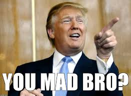 Mad Bro Meme - trump you mad bro imgflip