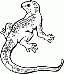 7 Best Abstract Coloring Pages Images On Pinterest Coloring Reptile Coloring Pages